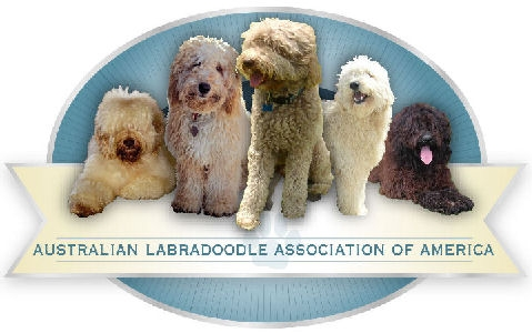 Australian Labradoodle Association of America Member